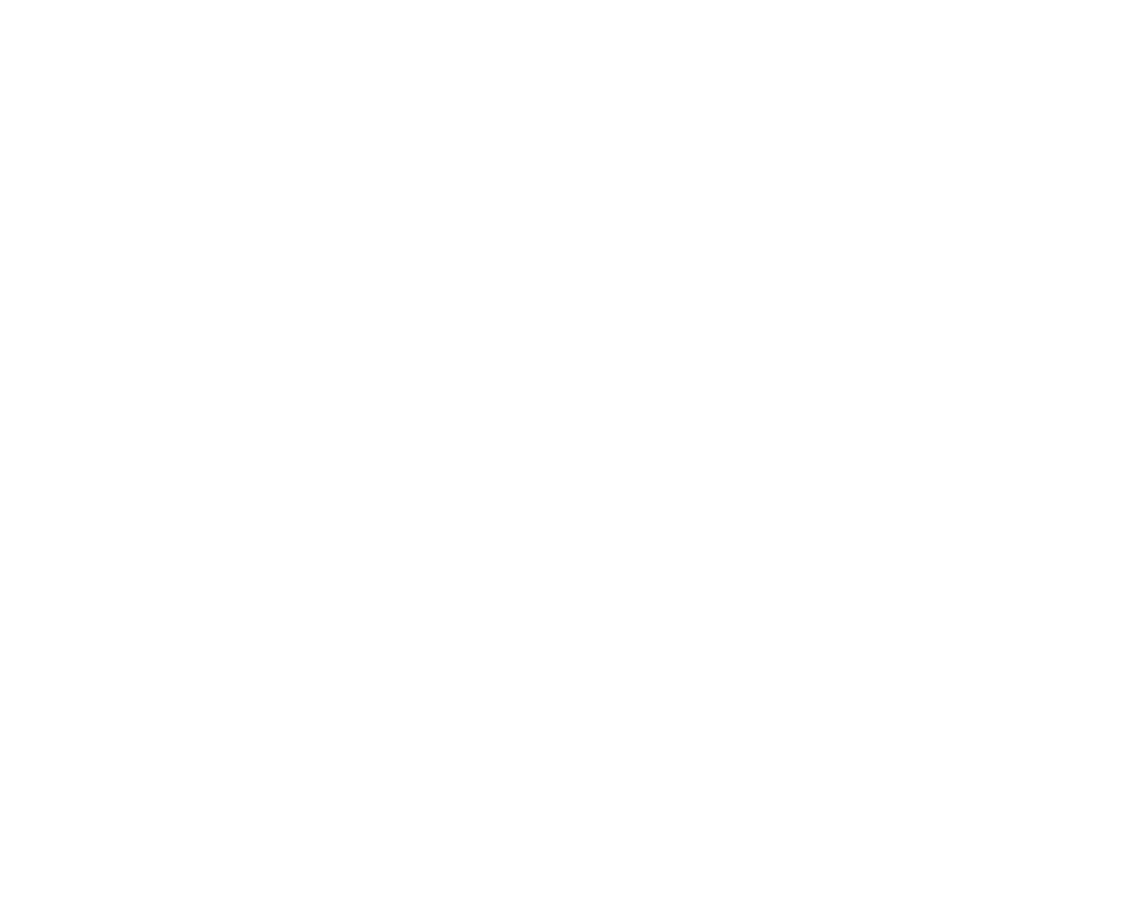 black lotus photography logo
